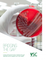Bridging the Gap: Linking animal and human medicine through veterinary school research and One Health
